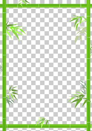 Bamboo Bamboe PNG