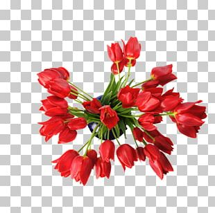 Stitch Wedding Invitation Flower Pattern PNG