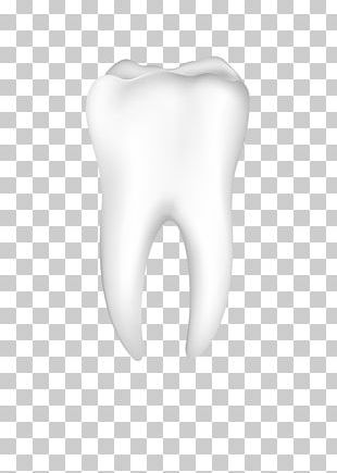 Tooth Nose Jaw Mouth Ear PNG