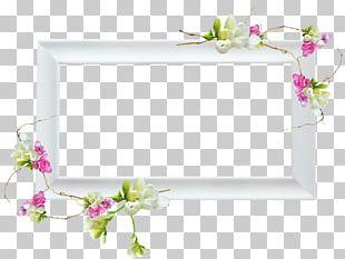 Floral Design Window Frames Portable Network Graphics PNG