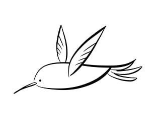 Hummingbird Coloring Book Drawing PNG