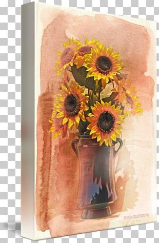Common Sunflower Still Life Photography Floral Design Vase PNG