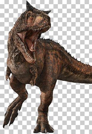 Carnotaurus Jurassic World Evolution Stygimoloch Baryonyx Jurassic Park PNG