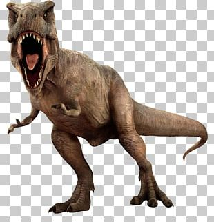 Jurassic Park: The Game Tyrannosaurus Ian Malcolm Lego Jurassic World PNG
