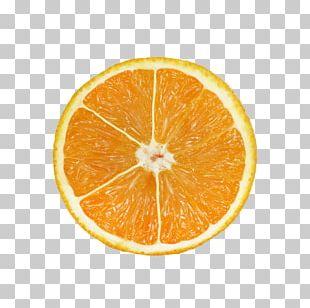 Blood Orange Frozen Yogurt Mandarin Orange Tangerine Tangelo PNG