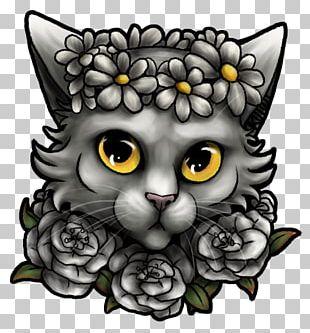 Whiskers Kitten Tabby Cat PNG