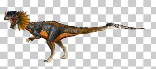 Dilophosaurus ARK: Survival Evolved Giganotosaurus Tyrannosaurus Anchisaurus PNG