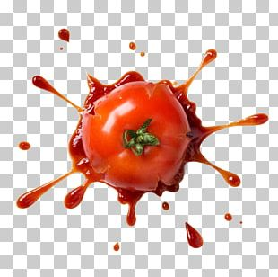 Tomato Pizza Pasta Stock Photography Ketchup PNG