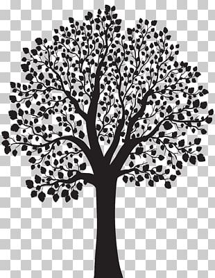 Tree Silhouette Illustration PNG