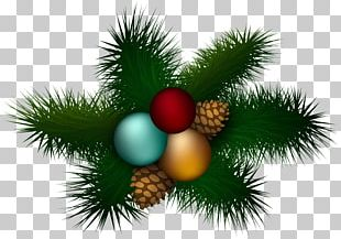 Christmas Ornament Candy Cane PNG
