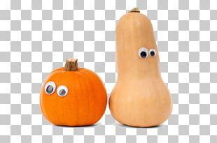 Cucurbita Pepo Cucurbita Maxima Calabaza Gourd Pumpkin PNG