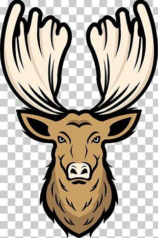Elk Red Deer Moose Antler PNG