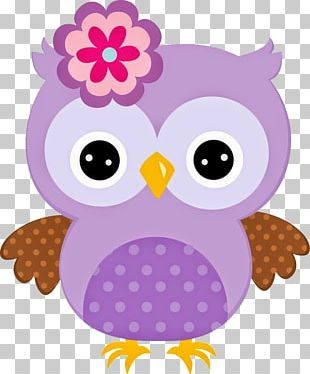 Owl Cartoon PNG