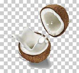 Coconut Milk Soy Milk Milk Substitute PNG