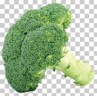 Broccoli Cabbage Vegetable Cauliflower PNG