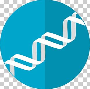 Genetics Computer Icons DNA Nucleic Acid Double Helix PNG