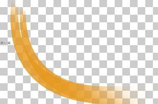 Circle Angle Yellow Font PNG