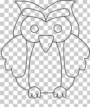 Coloring Book Owl Drawing Child Beak PNG