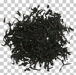 Earl Grey Tea Green Tea Nilgiri Tea Golden Monkey Tea PNG