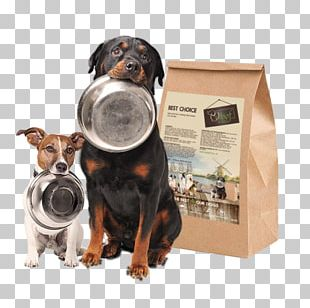 Dog Breed Puppy Dog Food Cat PNG