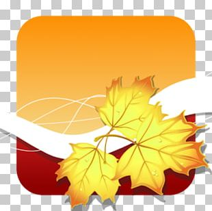 Link Free Android App Store Photography PNG