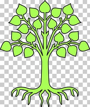 Family Tree Coat Of Arms Crest PNG