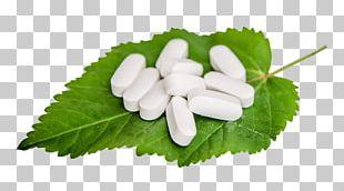 Medicine Pharmaceutical Drug PNG