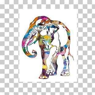 Indian Elephant African Elephant Watercolor Painting Elephantidae Drawing PNG