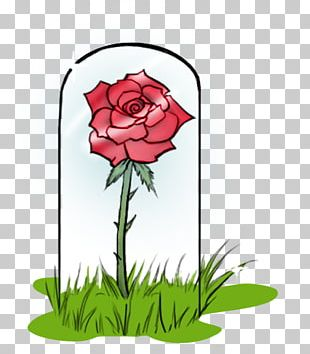 Belle Beast The Little Prince Rose PNG