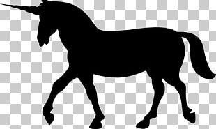 Horse Unicorn Legendary Creature PNG