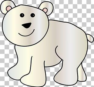 Baby Polar Bear Giant Panda PNG