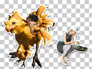 Final Fantasy XV : Comrades Chocobo's Mysterious Dungeon Square Enix Legendary Creature PNG