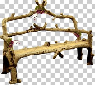 Trunk Tree Autumn Wood PNG