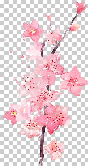 Watercolor Painting Art Peach PNG