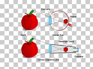 Human Eye Refracting Telescope Retina PNG