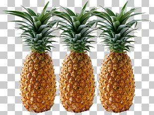 Juice Smoothie Pineapple PNG
