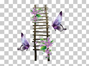 Fauna Purple Lavender Animal PNG