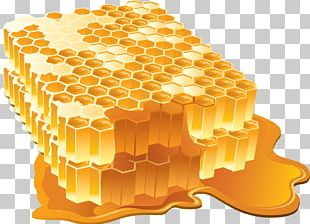 Honey Bee Honey Bee Honeycomb PNG