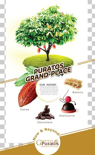 Nhà Máy Puratos Grand-Place Viet Nam Grand Central Bakery Business Innovation PNG
