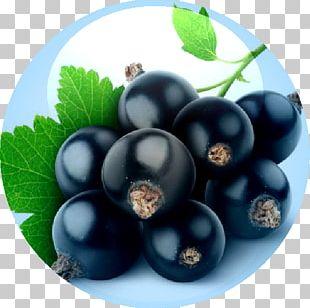 Blackcurrant Juice Crème De Cassis Flavor Organic Food PNG