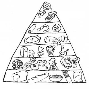 Food Pyramid Coloring Book Food Group Nutrition PNG