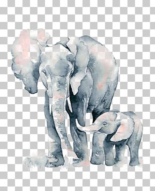 Watercolor Painting African Elephant Drawing PNG