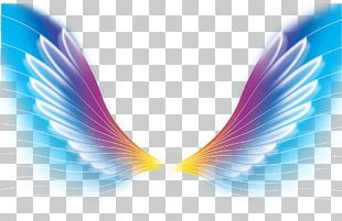 Color Wing PNG