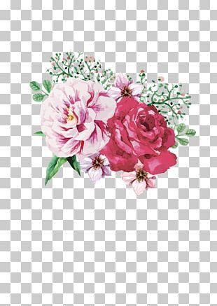 Cut Flowers Centifolia Roses Floral Design Garden Roses PNG