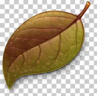 Coda Web Development Application Software CandyBar Icon PNG