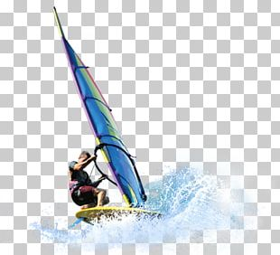 Sail Windsurfing Extreme Sport PNG