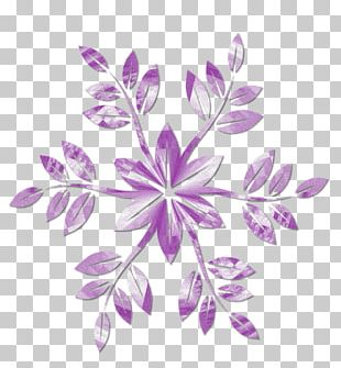 Petal Visual Arts Floral Design Stock Photography Pattern PNG