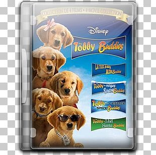 Dog Crossbreeds Labrador Retriever Puppy Love Carnivoran Vertebrate PNG