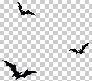 Happy Halloween Photography Monochrome PNG