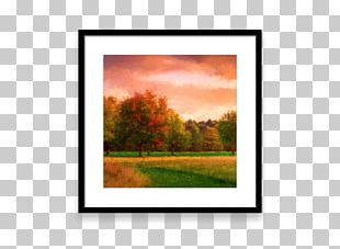 Painting Frames Tree Rectangle PNG
